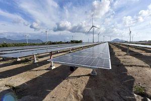 EVN nỗ lực giải tỏa công suất điện năng lượng tái tạo