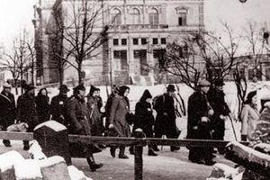Tình mẫu tử trong chiếc giày ở trại Auschwitz
