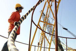 Đảo tiền tiêu xa nhất tỉnh Quảng Ninh chính thức có điện lưới quốc gia