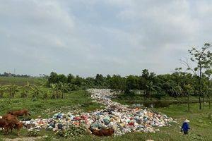 Vi phạm về quản lý đất đai, đê điều, môi trường ở Nam Định vẫn xảy ra