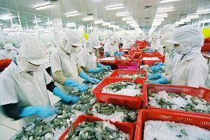 Nắm bắt lợi thế đẩy mạnh xuất khẩu nông sản vào thị trường châu Âu