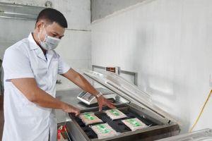 Các hợp tác xã nông nghiệp của Hà Nội: Đẩy mạnh xây dựng chuỗi liên kết