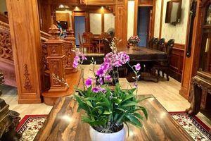 Choáng ngợp loạt biệt thự phủ gỗ tiền tỷ của đại gia Việt