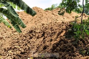 Vụ khai thác, tập kết đất lậu tràn lan: Lãnh đạo TP Huế lên tiếng
