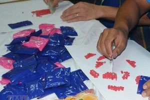 Đồng Nai: Bắt 15 đối tượng thuê nhà để sử dụng trái phép ma túy