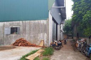 Phú Xuyên (Hà Nội): Đất nông nghiệp trại Ông Ổn bị chiếm dụng đến bao giờ?