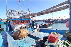 Tàu cá Bình Định bị nạn ở Trường Sa đã về đảo Lý Sơn an toàn