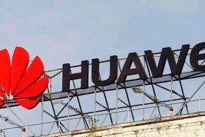 Sếp Huawei: Lệnh cấm tiếp cận Android của Mỹ đem lại cho Huawei nhiều cái lợi hơn là hại