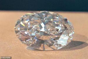 Chiêm ngưỡng những viên kim cương 'khủng' giá hàng chục triệu USD