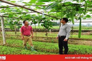Tuyên Quang: Nông dân khá giả nhờ nuôi cá đặc sản, trồng bầu canh, rau xanh
