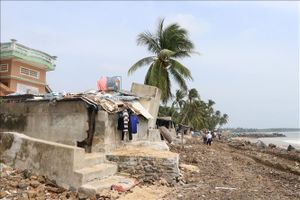 Phê duyệt dự án xử lý khẩn cấp sạt lở bờ biển Mỹ Quang Nam