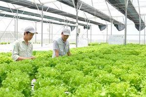 Số hóa chuỗi cung ứng nông nghiệp