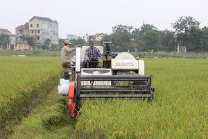 Phát triển kinh tế xanh trong nông nghiệp: Hướng đi đúng và trúng