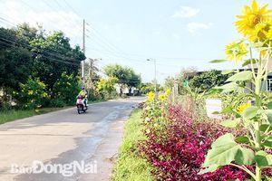 Phát triển giao thông để nâng tầm địa phương