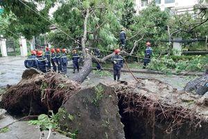 Bão số 5 đổ bộ vào Huế làm 1 người chết, 1.600 ngôi nhà tốc mái