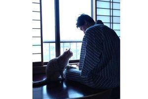 Những chú mèo… 'dịch vụ'