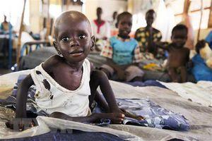 Lễ trao giải Emmy dành gần 3 triệu USD chống nạn đói ở trẻ em