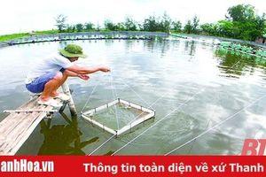 Để nông nghiệp bắt kịp xu hướng hiện đại - Bài 4: Phát triển nuôi trồng thủy sản thích ứng với biến đổi khí hậu