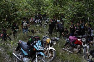 Đội quái xế 'săn' lâm tặc ở rừng già Amazon