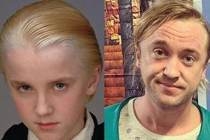 Ngoại hình xuống dốc của Tom Felton – chàng phù thủy Draco Malfoy phim 'Harry Potter'
