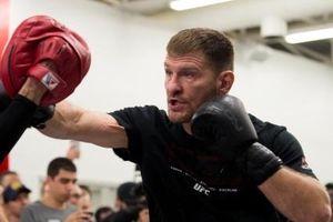 Những võ sĩ UFC có thể chuyển sang thi đấu quyền anh