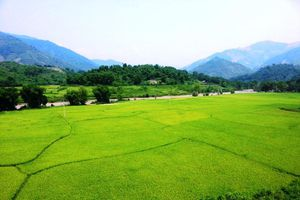 Mường Lát (Thanh Hóa): Xã vùng biên Quang Chiểu nỗ lực giảm nghèo