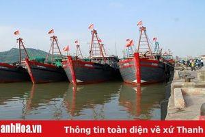 Thanh Hóa công bố mở cửa 3 cảng cá