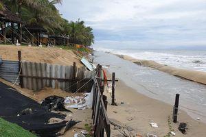 Bãi biển đẹp nhất châu Á ở Hội An lại tan hoang