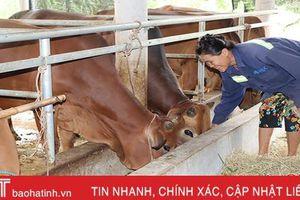 Quỹ Hỗ trợ nông dân – điểm tựa cho nhà nông xứ Cẩm