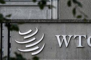 WTO và cuộc chiến thuế quan Mỹ-Trung