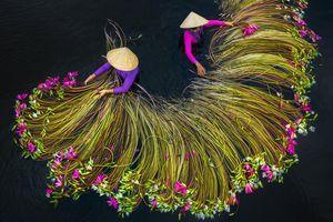 Cảnh Việt Nam vào top cuộc thi ảnh trên cao