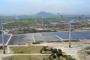 Đắk Nông chấp thuận chủ trương đầu tư 3 dự án điện gió