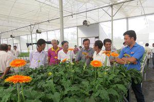 Nông dân làng hoa Sa Đéc chuẩn bị hoa, kiểng phục vụ thị trường Tết Nguyên đán 2021
