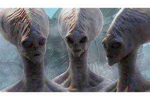 Người ngoài hành tinh có thể gửi mã độc và tiêu diệt nhân loại