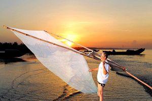 'Săn lộc biển' ở Trà Cổ