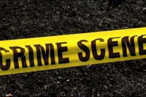 Phát hiện 12 thi thể trên 2 xe ô tô ở Mexico