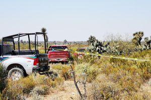 Mexico: Phát hiện 12 thi thể trong 2 xe ôtô tại bang San Luis Potosi