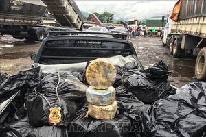Thu giữ hơn 1,5 tấn cocaine giấu tinh vi trong container chứa ngô