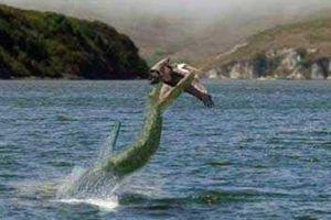 Bí ẩn 'quái vật' hồ Nix ở Anh gây xôn xao dư luận thế giới