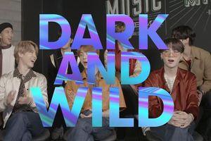 Jungkook nói về hậu trường 'Dark & Wild', RM trổ tài phiên dịch