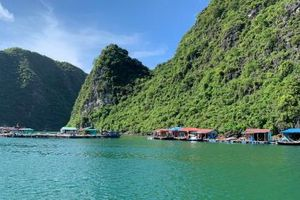 Quảng Ninh định hướng phát triển hiệu quả nghề nuôi trồng thủy sản