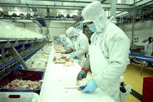 Ngành chế biến thịt nội địa có đủ sức làm lớn?