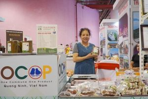 Quảng Ninh: Vận động người dân đẩy mạnh tiêu dùng nội tỉnh