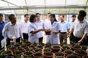 Thái Nguyên xứng danh trung tâm kinh tế vùng Việt Bắc