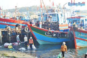 Xử lý nước thải tại cảng cá: Chưa được quan tâm đúng mức