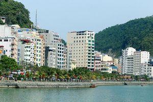 Huyện Cát Hải được công nhận đạt chuẩn nông thôn mới