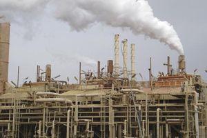 Iraq tăng cung dầu thô, hy vọng thị trường hồi phục