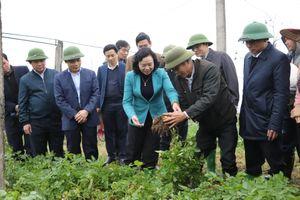 Hà Nội: Ưu tiên nguồn lực đầu tư xây dựng nông thôn mới, nâng cao đời sống người dân