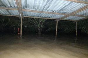 Mưa lớn trên diện rộng, gây cảnh ngập lụt khắp khu vực Trung Trung Bộ