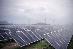 Ninh Thuận cần cơ chế để trở thành Trung tâm năng lượng tái tạo cả nước
